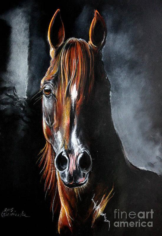 Stallion Art Print featuring the drawing Monogramm by Angel Ciesniarska