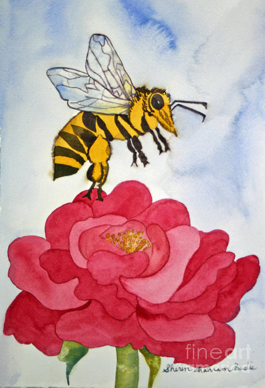 Bee Art Print featuring the painting The Bee And The Rose by Shirin Shahram Badie