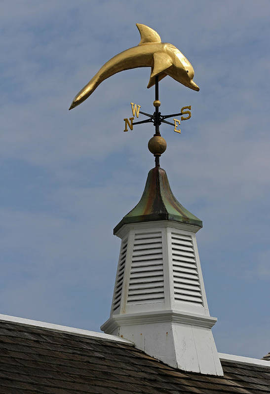 Dolphin Art Print featuring the photograph The Golden Dolphin Weathervane by Juergen Roth