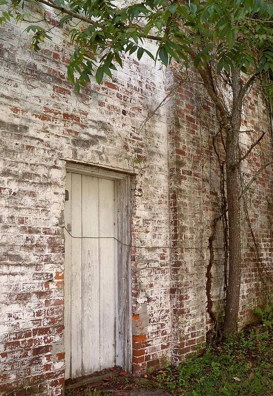 Door Art Print featuring the photograph Whitewash by Katie Beougher