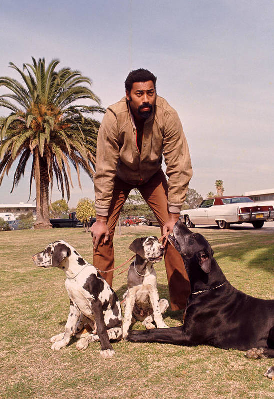 Marvin Newman Art Print featuring the photograph Wilt Chamberlain With Dogs by Retro Images Archive