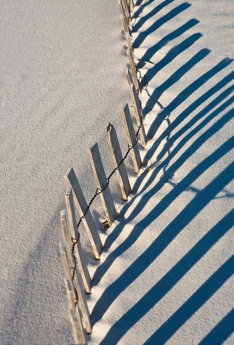 Beach Art Print featuring the photograph Beach Graphic by Janice M LeCocq