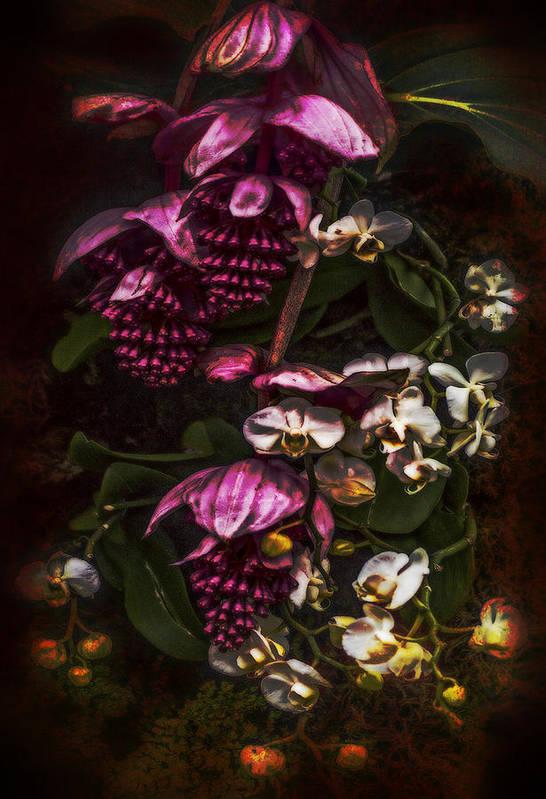 Digital Art Art Print featuring the digital art Davinci Orchid Wall by Jill Balsam