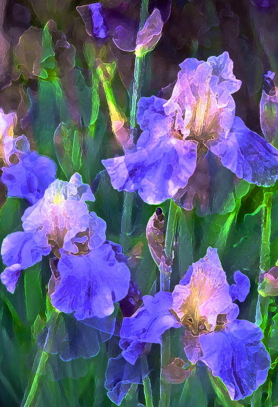 Floral Art Print featuring the photograph Iris 51 by Pamela Cooper