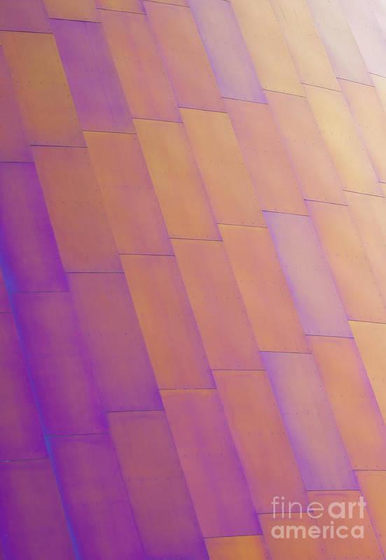 Purple Art Print featuring the photograph Purple Orange Two by Chris Dutton