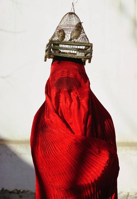 Color Image Art Print featuring the photograph Woman Draped In Red Chadri Carries by Thomas J Abercrombie
