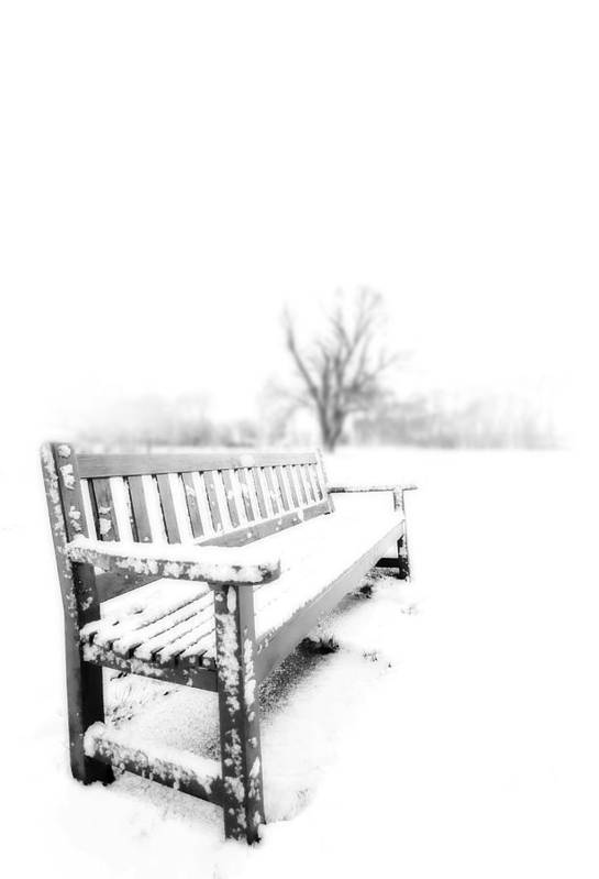 Winter Art Print featuring the photograph Winter Time by Svetlana Sewell