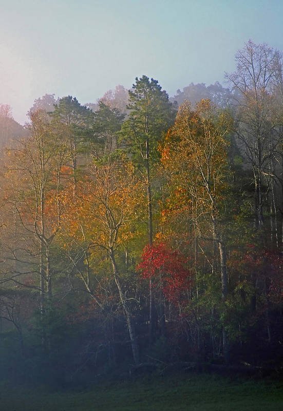 Fall Art Print featuring the photograph Autumn Morning by James Jones