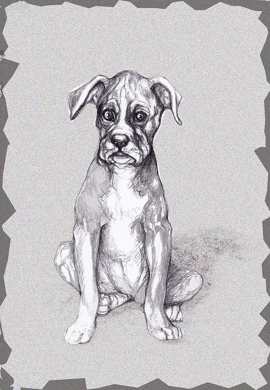 Dog Art Print featuring the mixed media Boxer Pup by Peggy Wilson