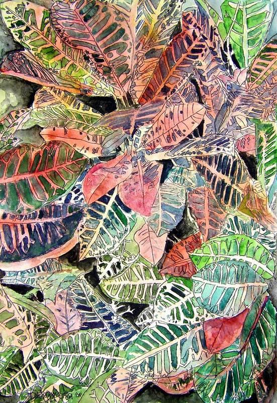 Croton Art Print featuring the painting Croton Tropical Art Print by Derek Mccrea