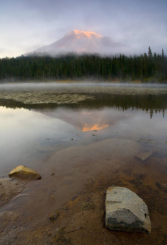 Mt. Rainier Art Print featuring the photograph Misty Alpenglow by Mike Dawson