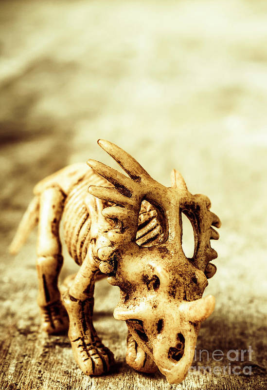 Exhibition Art Print featuring the photograph Model Styracosaurus Skeleton by Jorgo Photography - Wall Art Gallery