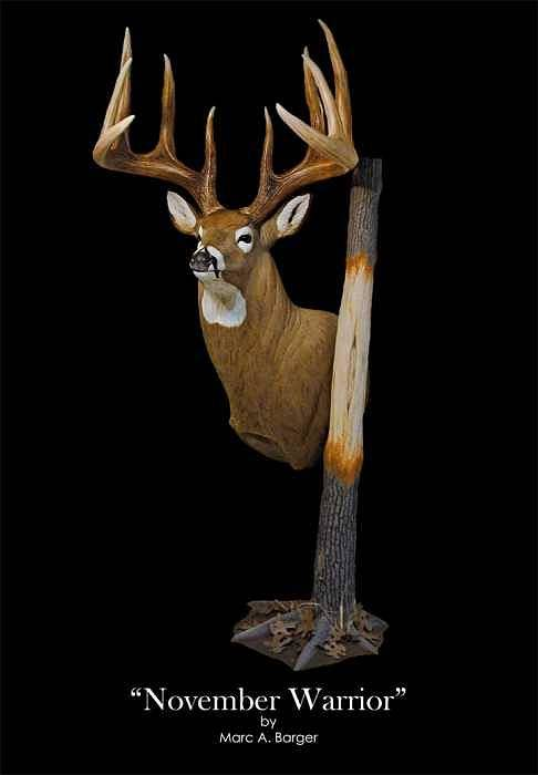 Whitetail Art Print featuring the sculpture November Warrior by Marc Barger