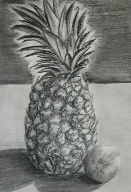 Pineapple Art Print featuring the drawing Pineapple by Steven Santee