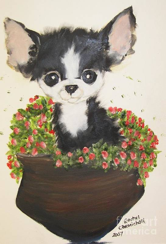 Chihuahua Art Print featuring the painting Potted Pup by Rachel Carmichael