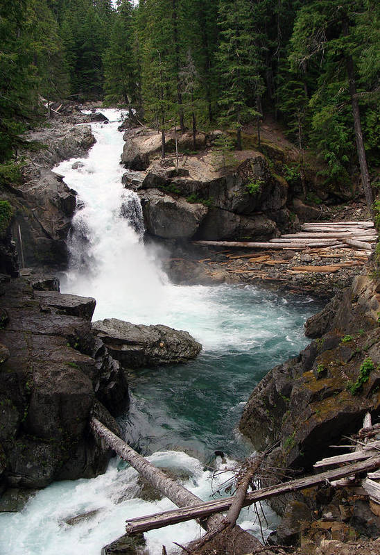 Landscape Art Print featuring the photograph Rainier Waterfall by Ty Nichols