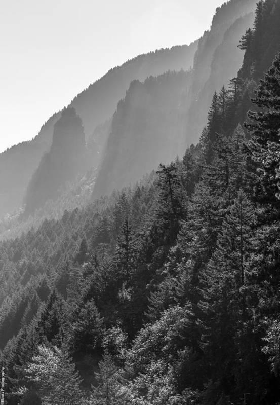 Art Print featuring the photograph Shadow Cliffs by Eric Bass
