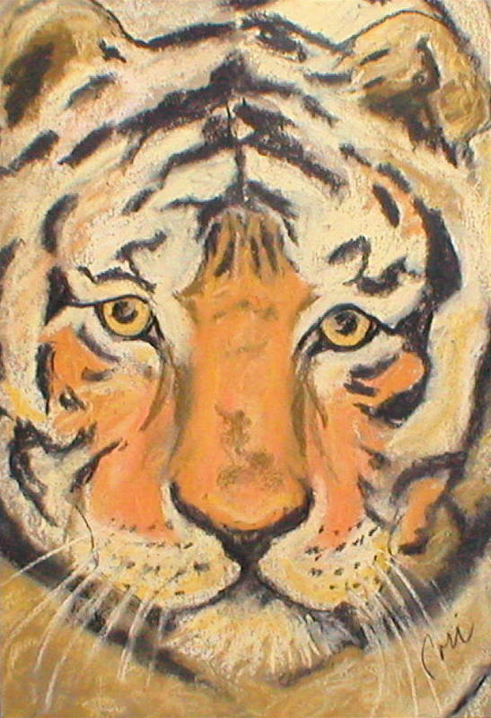 Pastel Art Print featuring the drawing The Amber Stare by Cori Solomon