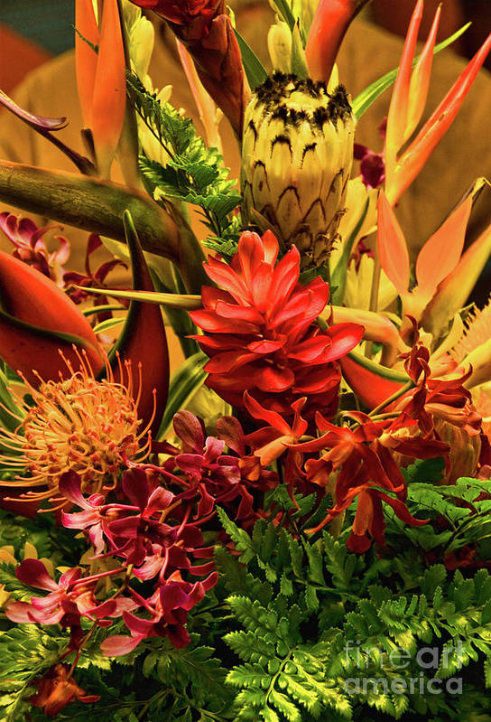 Orange Art Print featuring the photograph Tropical Flowers by Peggy Starks