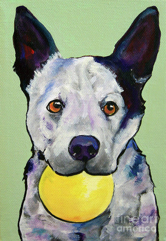 Australian Cattle Dog Art Print featuring the painting Yellow Ball by Pat Saunders-White