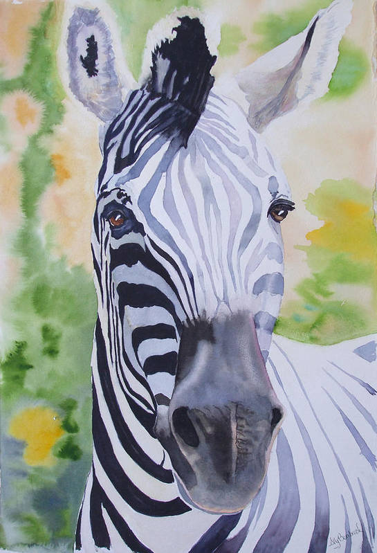 Zebra Art Print featuring the painting Zebra Crossing by Ally Benbrook