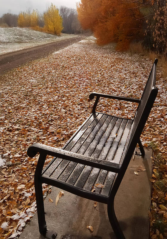 Benches Print featuring the photograph Alone With Autumn by Steven Milner