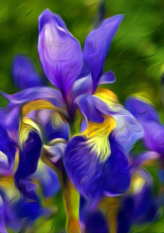 Flower Art Print featuring the painting Awaken by Nelson Bibow