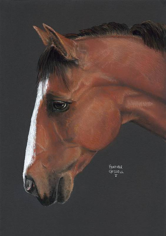 Horse Art Print featuring the pastel Bay Horse by Heather Gessell