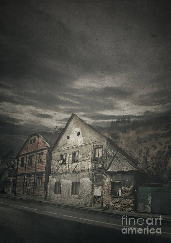 House Art Print featuring the photograph Old House by Jelena Jovanovic