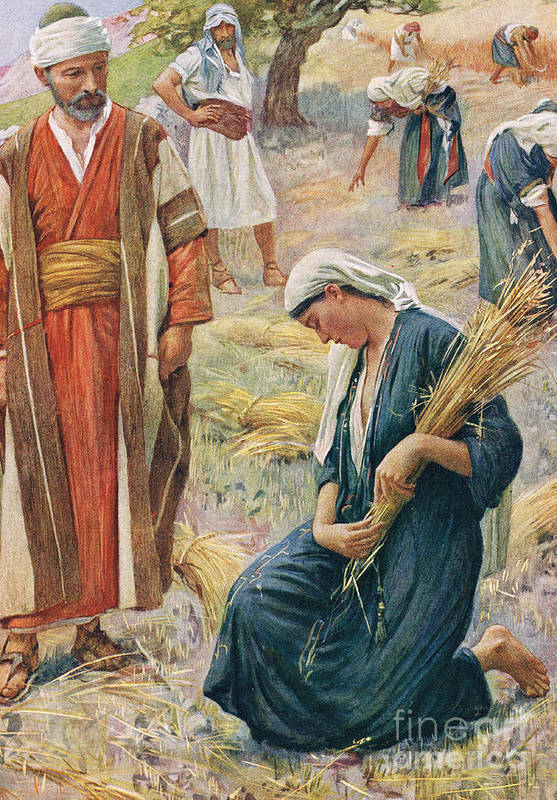 Book Of; Biblical; Boaz; Boaz's Field; Kneeling; Corn; Harvest; Harvesting; Reaping; Yield; Widow; Husband And Wife; Holy Land; Judea; Jew; Jewish; Corn Art Print featuring the painting Ruth by Harold Copping