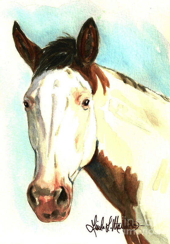 Wild Horse Print featuring the painting Shawnee by Linda L Martin