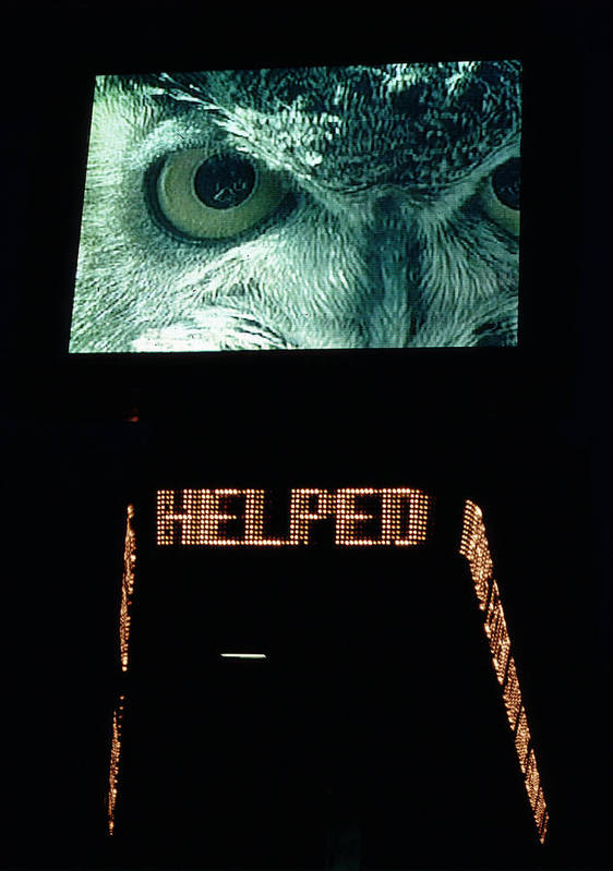 Unusual Art Print featuring the photograph Owl Eye Zipper Sign Times Square by Tom Wurl