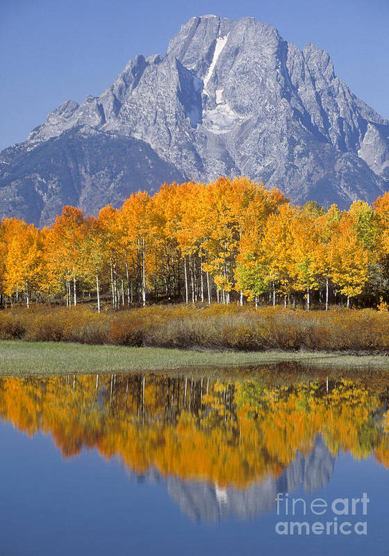 Bronstein Art Print featuring the photograph Reflection At Oxbow Bend by Sandra Bronstein