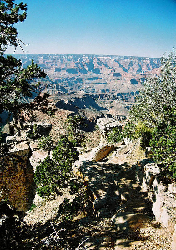 Grand Canyon Art Print featuring the photograph Canyon Shadows by Cathy Franklin