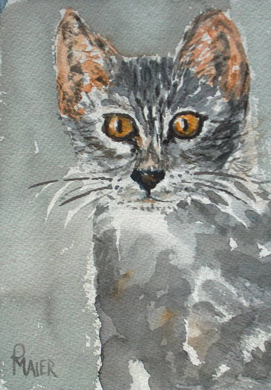 Kitten Art Print featuring the painting Charlotte by Pete Maier