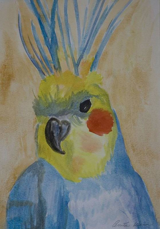Birds Art Print featuring the painting Cockatiel by Anita Wann