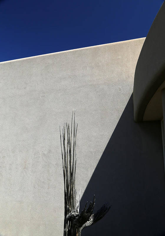 Cactus Art Print featuring the photograph Dead Saguaro Building And Shadows by Mary Bedy