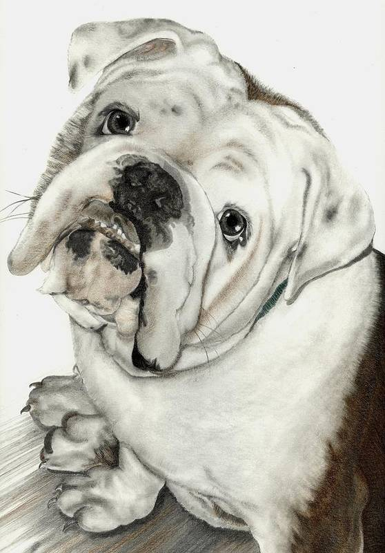 Pets Art Print featuring the mixed media Dean' Buddy by Lisa Bell