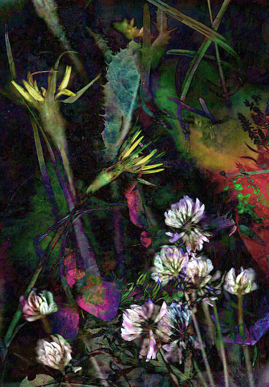Wild Art Print featuring the mixed media Grasslands Series No. 7 by Vinson Krehbiel