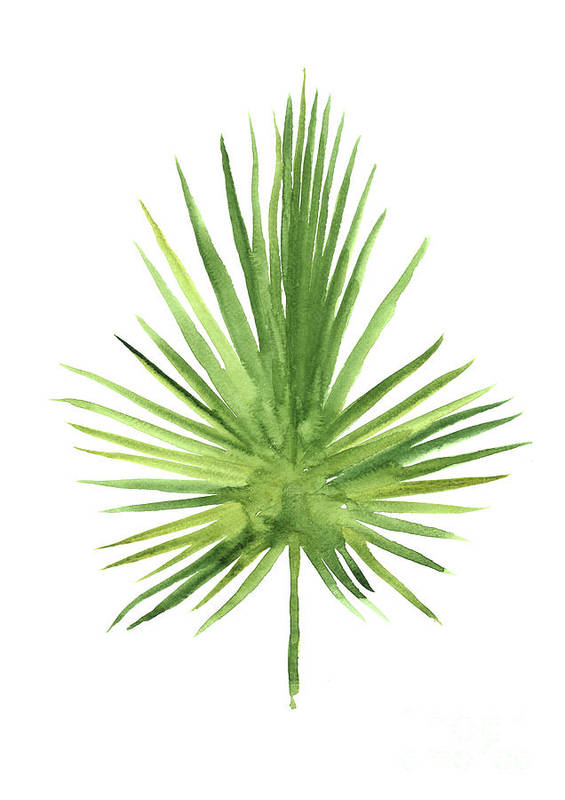 fan palm leaf tropical tree art print green leaves watercolor