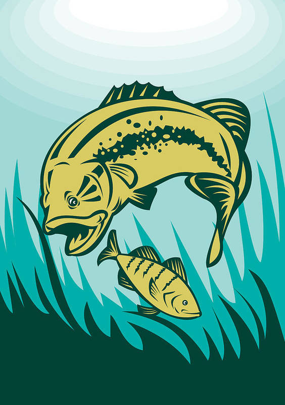 Largemouth Print featuring the digital art Largemouth Bass Preying On Perch Fish by Aloysius Patrimonio