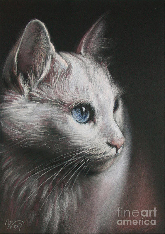 Cat Art Print featuring the painting Light And Darkness by Valentina Vassilieva