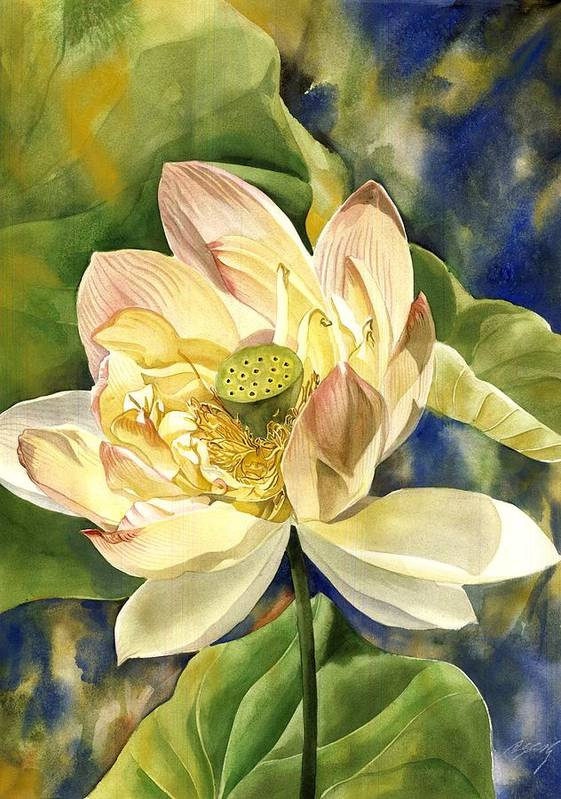 Flower Art Print featuring the painting Lotus In Blooms by Alfred Ng