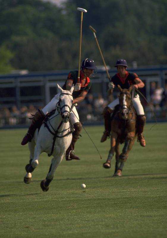 Prince Charles Playing Polo In Windsor Great Park As A Young Man On Smith Lawn The Of Wales His Royal Highness Play At All Four Position No Back Ancient Persia Modern Game From India Pulu Is To Two British Soldier Up Calcutta Club Military Officer Britain And Are With Photo By Michel Guntern Travelnotes Travel Er Pics Horse Sport White Brown Mallet Gallop King Riding Royalty London Lifestyle Horseback People Canter England Focus Foreground Blurred Travelpics Competition Tradition Equestrian Ball Art Print featuring the photograph Prince Charles Playing Polo by Travel Pics