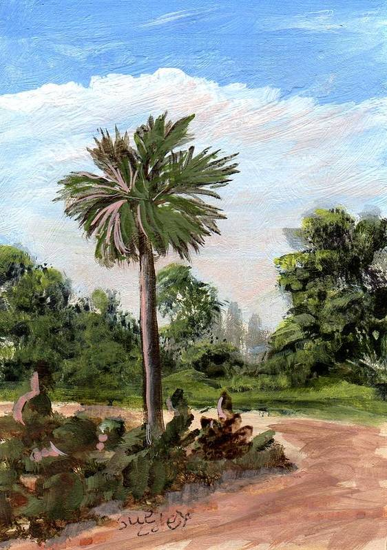 Trees Art Print featuring the painting The Palmetto Tree by Sue Coley