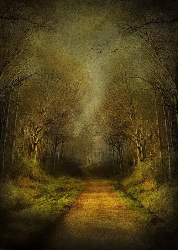 Fantasy Art Print featuring the digital art Unknown Footpath by Svetlana Sewell