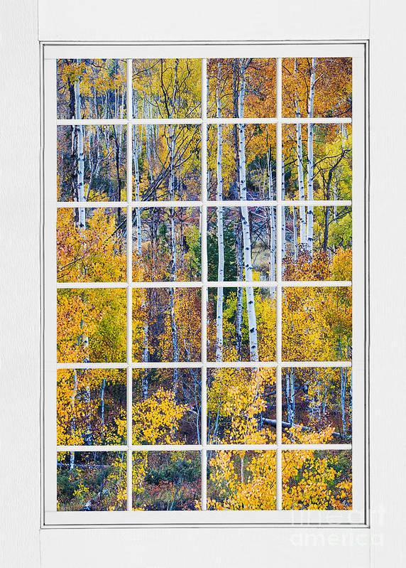 Window Art Print featuring the photograph Aspen Tree Magic Cottonwood Pass White Window Portrait View by James BO Insogna