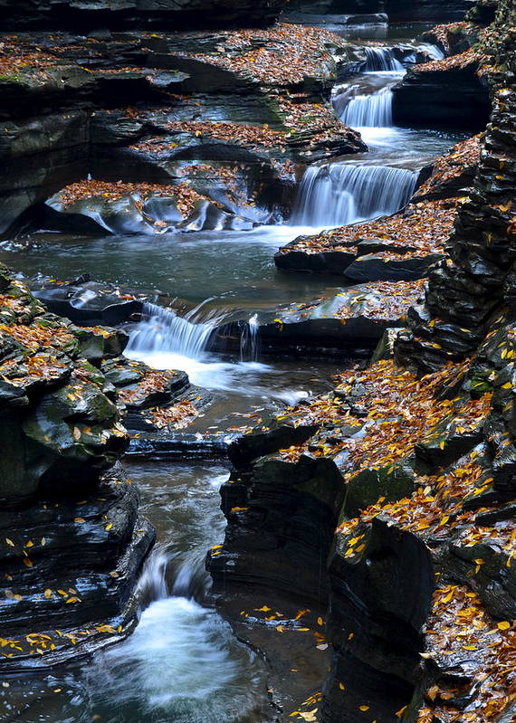 Autumn Art Print featuring the photograph Autumn Cascade by Frozen in Time Fine Art Photography