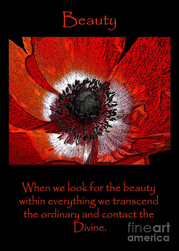 Flower Art Print featuring the photograph Beauty Red Anenome by Victoria Page