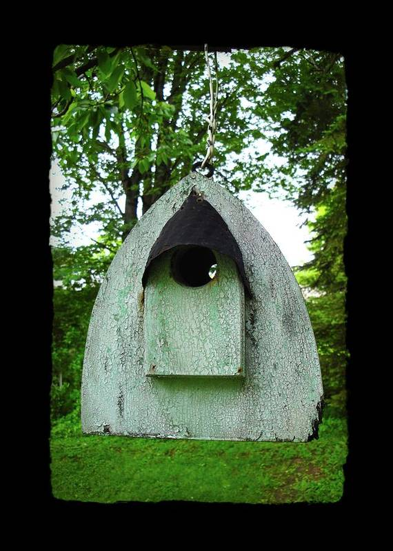 Bird House Art Print featuring the photograph Bless This Nest by Jane Alexander